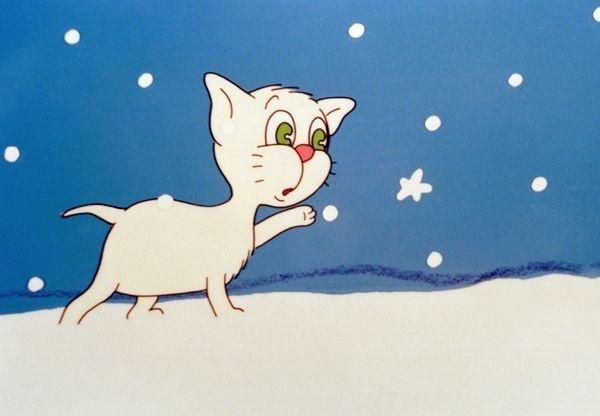 Kot Filemon jest wyraźnie zdziwiony widząc śnieg (fot. TVP)