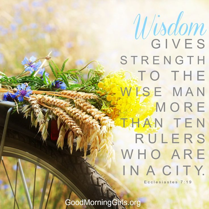 Wisdom gives strength to the wise man more than ten rulers who are in a city. Ecclesiastes 7:9