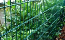 Doppelstabmattenzaun in grün aus Metall.    Verfügbar in verschiendenen Höhen und Längen.