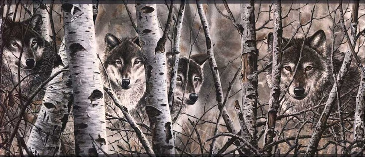 Wolves Wallpaper Border Murals And Borders Forest