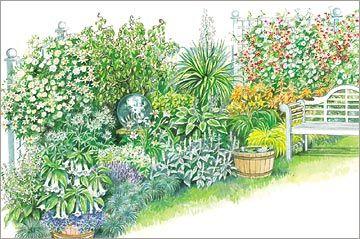 Design for a Moon Garden  http://www.bhg.com/gardening/plans/colorful/design-for-a-moon-garden/?page=2