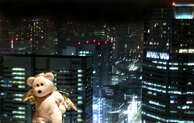 View from the Top of Shinagawa in the Prince Hotel 39th floor.