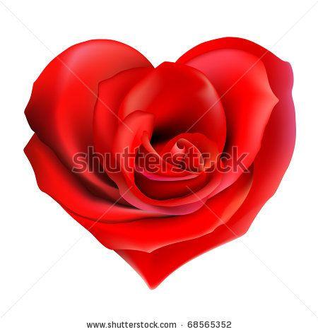 http://vector-magz.com/wp-content/uploads/2013/03/Valentine-Heart-Rose-Vector1.jpg