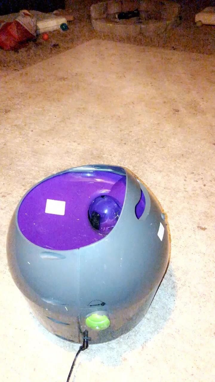 Homeappliancessoftware Id 3982243054 Buyhomeappliancesonlineinpakistan Dog Ball Dog Ball Launcher Ball Launcher