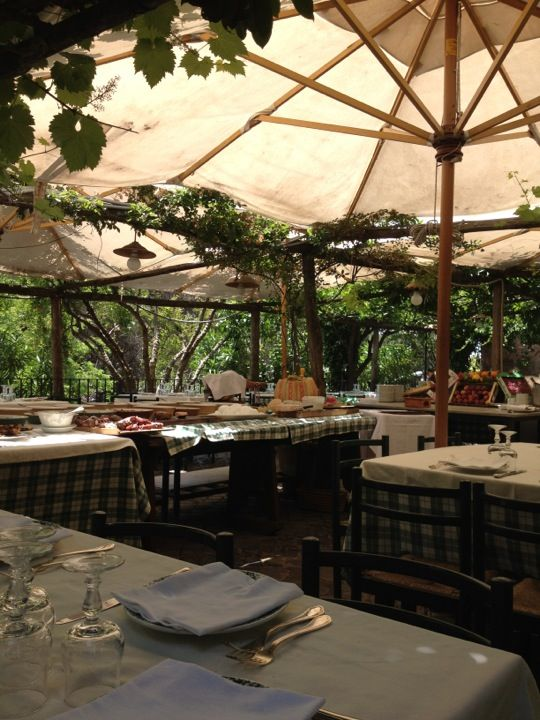 amazing. charming restaurant in grottaferrata