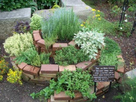 25 best ideas about herb spiral on pinterest spiral for Vegetable herb garden design
