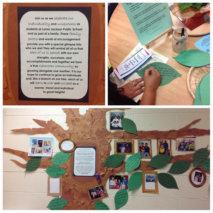 "A 'Family Tree' to celebrate the children & their families & reminds them that they are special, unique & part of a classroom community that learns and grows together - from Our Kindergarten Journey ("",)"