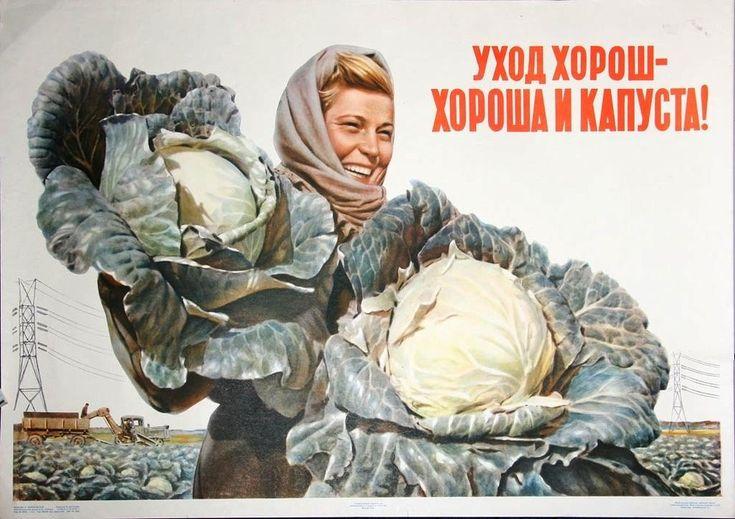 redhousecanada:  ratak-monodosico: «Good care - good cabbages». Soviet poster, 1956.