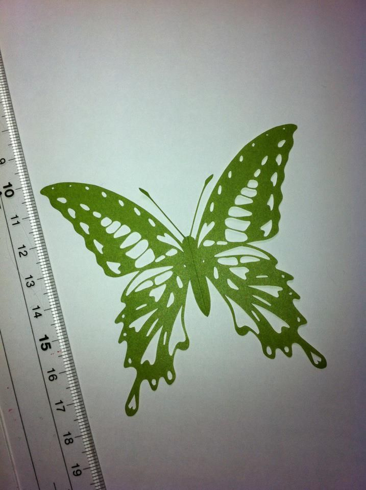 I used a pair of special scissors produced by Hina Aoyama who is the very fantastic paper cutting artist.  4 / 2012