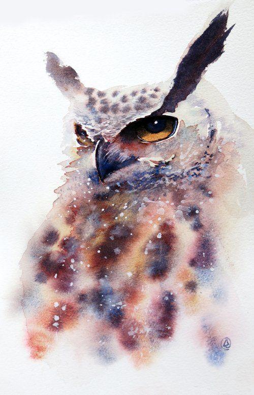 As belas pinturas em aquarela de aves de Daniel Luther