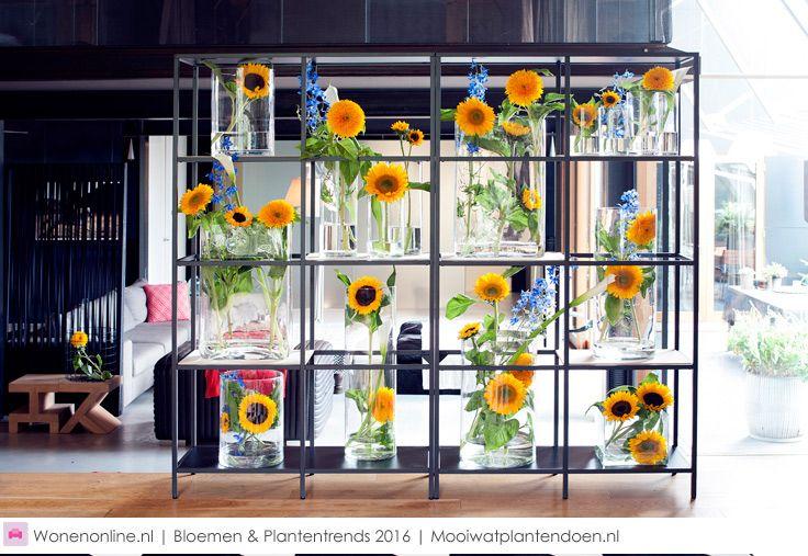 Woontrends - Stijltrends bloemen en planten 2016 Reconsider space