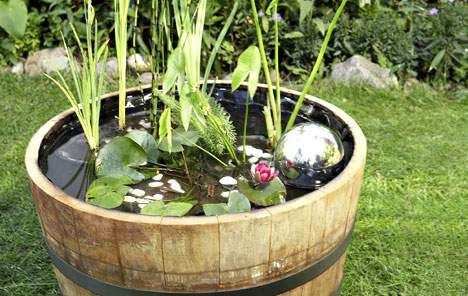 Bad für die Seele: ein Wassergarten im Holzfass. Bepflanzen Sie das Gefäß ganz nach Ihrem Geschmack: Hier leben Blumenbinse, gelbe Schwertlilie, Hechtkraut und Zwergseerose zusammen.