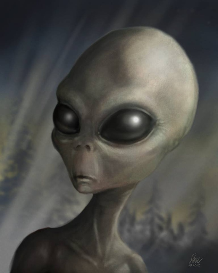 Do you believe Grey aliens exist? - http://www.bubblews.com/news/1723226-do-you-believe-grey-aliens-exist: