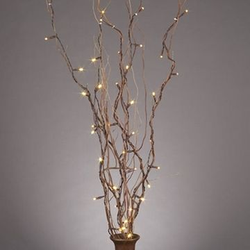 Best 25 Willow Branches Ideas On Pinterest Curly Willow Tall Vase Decor And Tall Glass Vases