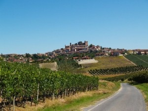 Nuovo progetto FIBI - Incoming operatori irlandesi in Langhe e Roero                 New FIBI's project - Incoming of Irish buyers ( food & wine sector) in Italy (Langhe & Roero )