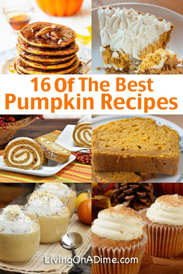 I love fall because I can finally start eating pumpkin again! Here are 16 of the best pumpkin recipes I use! Our family makes most of these every year.