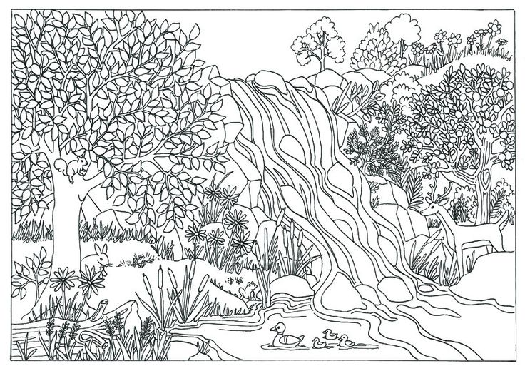 printable waterfall nature scene coloring page coloring. Black Bedroom Furniture Sets. Home Design Ideas