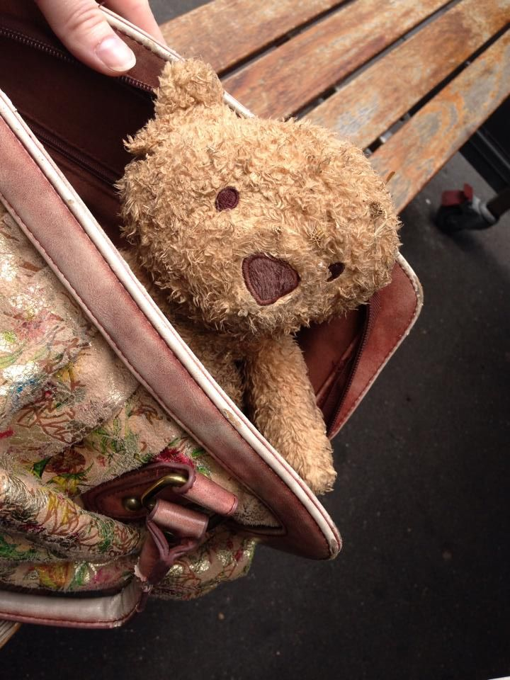 FOUND in PORT MELBOURNE, AUS  This cute teddy bear was found on Liardet Street, Port Melbourne. Left ear missing! He has a Marks and Spencers label. Currently being cared for by foster parents He has been given a bath and some minor wounds have been sewn up. Contact: https://www.facebook.com/christa.malone or https://www.facebook.com/TeddyBearLostAndFound