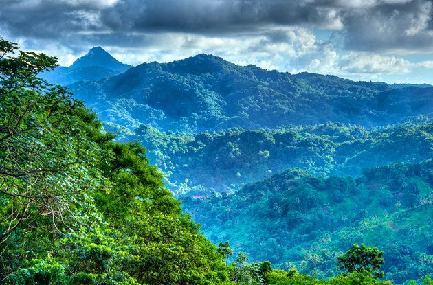 St. Lucia Tourism Attractions | 11 Edmund Rain Forest Reserve - Enbas Saut Waterfall Trail