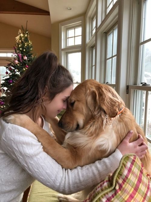 Dog Love More Powerful Than Partner Love? You Might Be Surprised