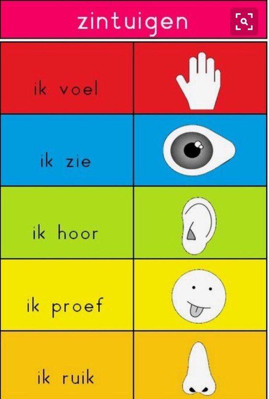Zinvolle Zintuigen is een leerlijn waarbij leerlingen kennismaken met de verschillende zintuigen van het menselijk lichaam. De leerlingen krijgen informatie over de werking van de zintuigen en de organen.  http://www.ditiswijsbredeschool.nl/ons-aanbod/natuur-en-omgeving/zinvolle-zintuigen/