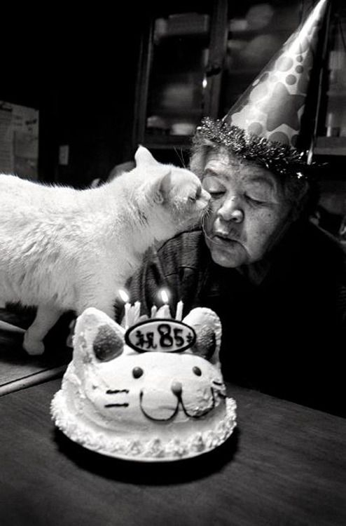 """Miyoko Ihara Miyoko Ihara's images of her grandmother and beloved cat will not disappoint you. From working in the fields to taking naps, these two are inseparable. Ihara not only explores the amazing bond between human and animal, but also tells the story of her elderly grandmother's life in Japan and the daily tasks she pursues. These images can be found in the beautiful book """"Miyoko Ihara: Misao the Big Mama and Fukumaru the Cat."""""""