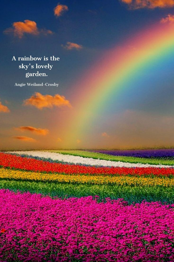 Flower Quotes And Spring Quotes With A Soulful Shimmer Mom Soul Soothers Nature Quotes Spring Quotes Rainbow Quote
