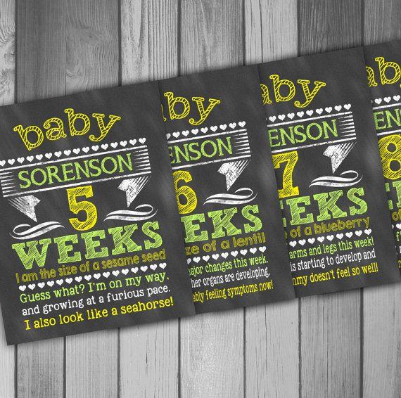 Pregnancy Week by Week Weekly Pregnancy Pregnancy Chakboard Countdown Printable Pregnancy Weeks 5-40