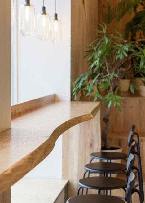Baranova Pokorsky creates simple plant-filled interior for
