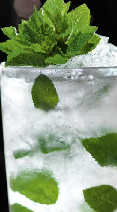 Mojito. INGREDIENTS: 2 parts BACARDÍ Superior rum, 4 lime wedges, 12 fresh mint leaves, 2 heaped tsp of caster sugar, 1 part soda water/club soda, Sprig of fresh mint to garnish. METHOD: Gently press together the limes & sugar. Bruise the mint leaves by clapping them between your palms, rub them on the rim of the glass and drop them in. Next, half fill the glass with crushed ice, add the BACARDÍ Superior rum & stir. Top up with crushed ice, a splash of soda and a sprig of mint.