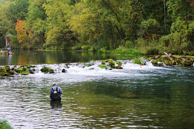 17 best images about missouri on pinterest mark twain for Bennett springs trout fishing