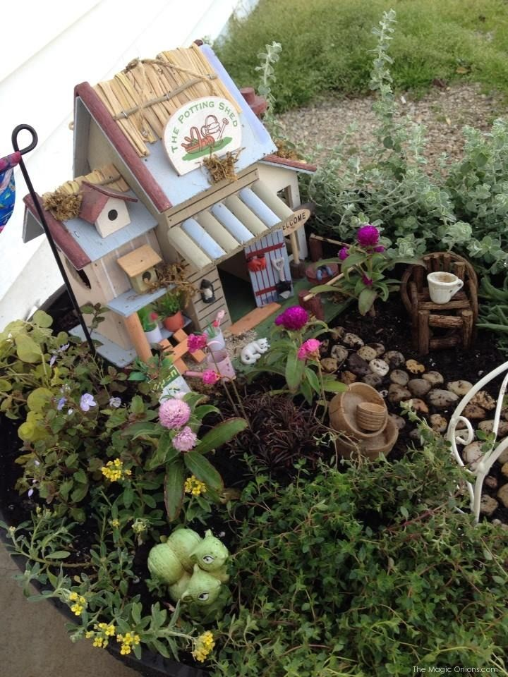 Create an outdoor Fairy Garden with your