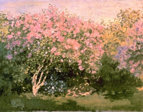 I don't think I've ever seen this Monet before. Love the colors! Lilac in the Sun (1873) Claude Monet