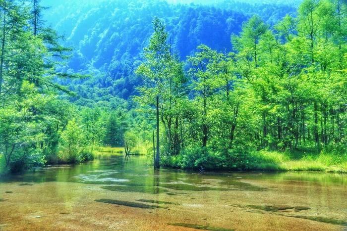 「田代」とは「水田」という意味で、田代池とは「水田の池」という意味を持ちます。北アルプスの写真画像