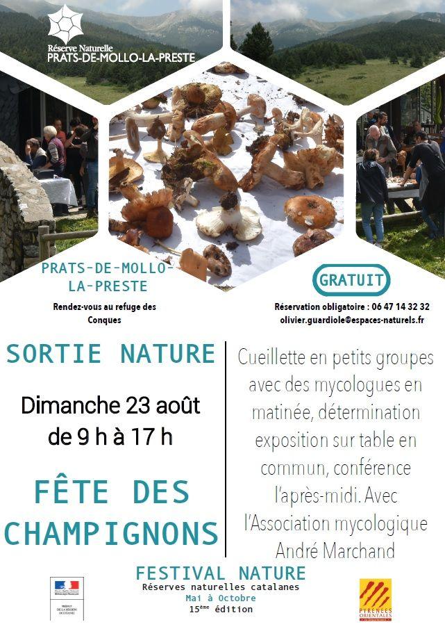 Fête Des Champignons En 2020 Reserve Naturelle Les Quatre Saisons Petits Groupes