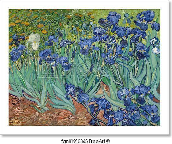 Free art print of Irises by Vincent Van Gogh