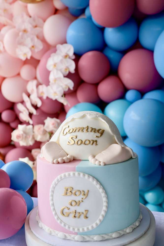 Blue Or Pink What Will You Be Gender Reveal Party Ideas Photo 2 Of 12 Baby Shower Party Favors Gender Reveal Party Gender Reveal Cake