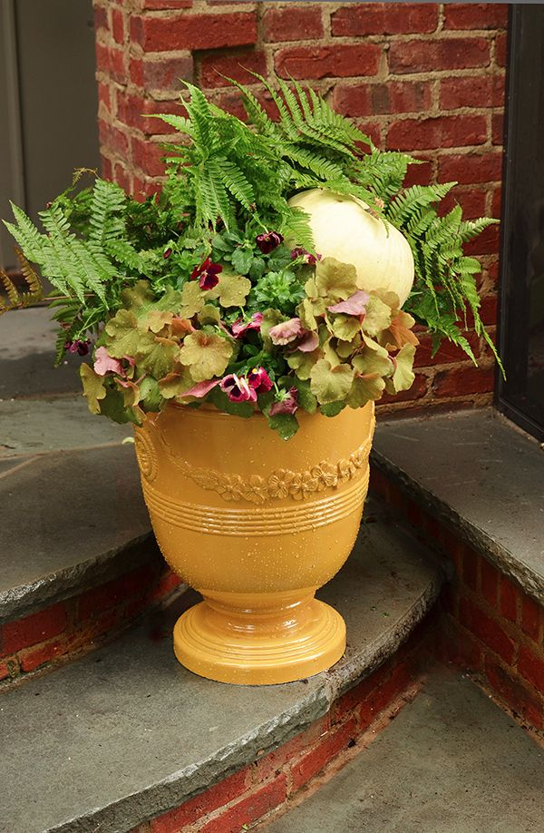 4 Festive Ideas for Fall Container Gardening: Fall Outdoor Planter Ideas, Autumn Planter Ideas, Container Gardening Ideas, Container Garden Ideas, Fall Planter Ideas, White Pumpkin, Fall Planters Ideas, Urn Planters Ideas, Autumn Planters