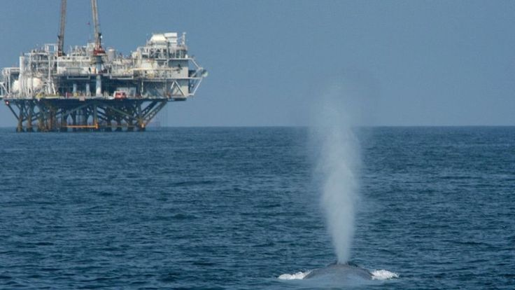 The controversial plan considers drilling most of the country's outer continental shelf.