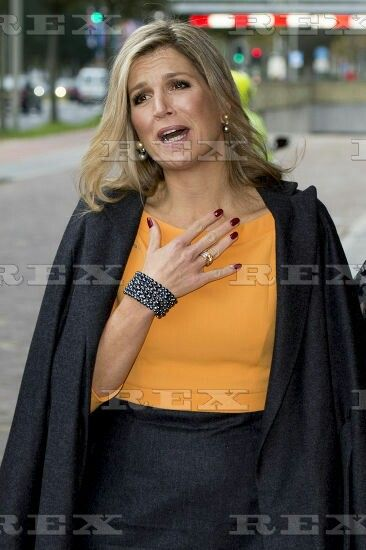 World Conference of Women's Shelters at the World Forum, The Hague, The Netherlands - 04 Nov 2015 Queen Maxima of the Netherlands 4 Nov 2015 - love this understated look - very pretty!!!!!