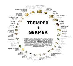 Vous devriez tremper vos graines et noix - Consommer ses aliments en toute sécurité ? - Page 2 de 3 - SuperNourriture