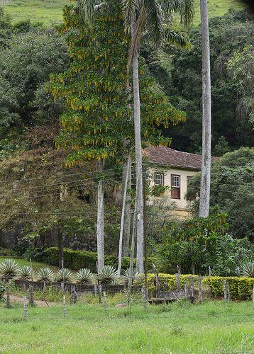 Fazenda em Coronel Pacheco, Minas Gerais, Brazil