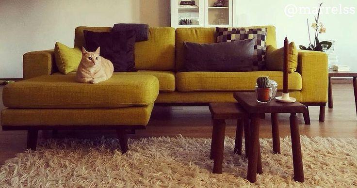 Met onze top 10 woonkamers Hsfy.nl/top10w19 als inspiratie kun je je woonkamer een makeover geven! Check onze top 10 mooiste woonkamers vanaf nu online! woning #stijl #woonkamer #bruin #okergeel #kussnes #hout #muur #tafel #vloerkleed #mooi #inspiratie #bank # lamp #wonen #top10 @marrelss