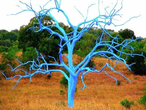 Good ide Chris Killorn, he paints dead trees in bright colors in the mountains of Colorado!! Awesome