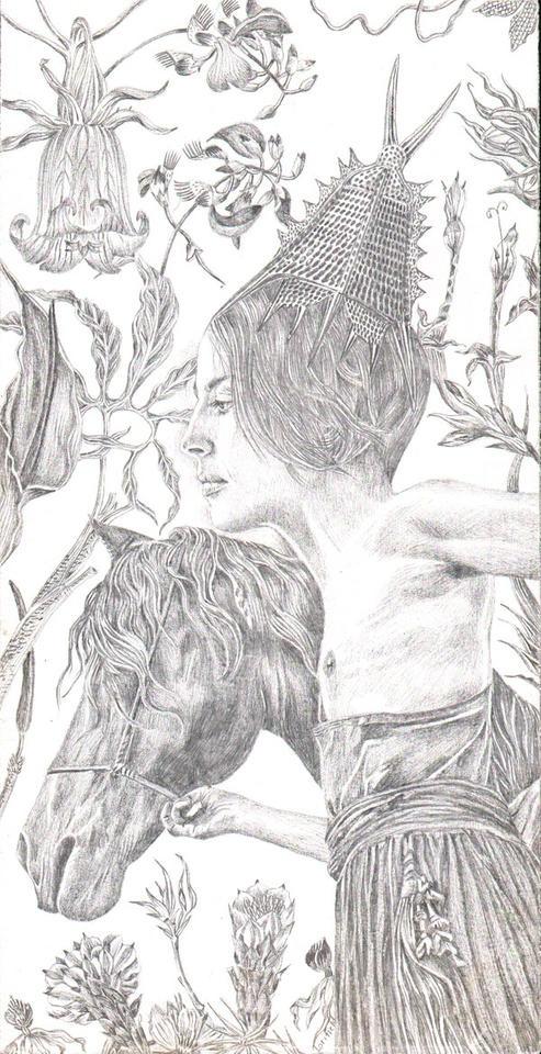 Lori Field, Silverpoint drawings