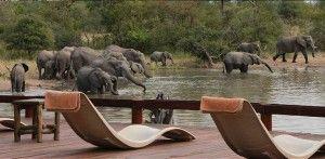 Kruger National Park Lodges