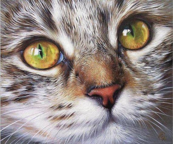 BUY 2, GET 1 FREE! Cat Gray 552 Cross Stitch Pattern