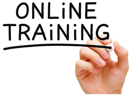 There are a few interesting tips and tricks that help in developing a great online training software.
