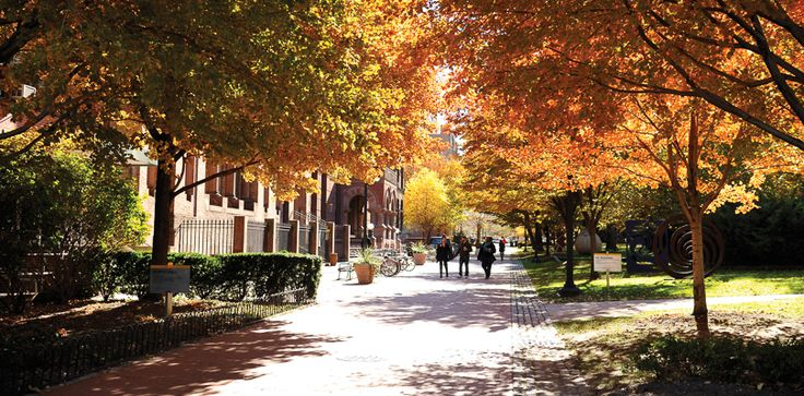 Pratt Institute | Located in Brooklyn New York has a great course for interior design