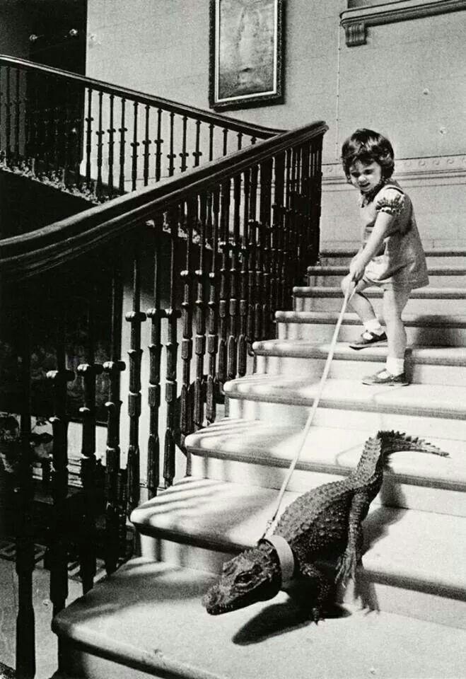 just takin' my gator for a walk...